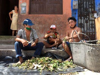 Tres hombres venden hojas de tabaco en un mercado en Iquitos (Perú).