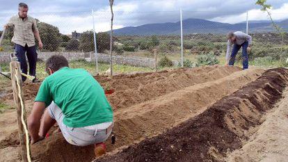 Trabajos de preparación del huerto escolar que el Ayuntamiento ordenó desmantelar.