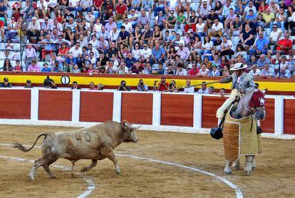 Young bull from Prieto de la Cal, fought in 2018 in Calasparra (Murcia).