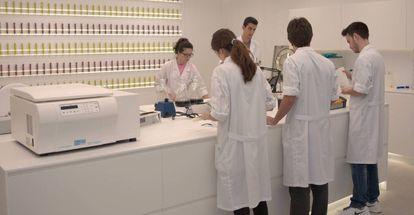 Laboratorios de Snfl, el centro de innovación de AMC sobre uvas en Murcia.