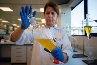 Una empleada trabaja en la fábrica de aceite Dcoop en Antequera (Málaga), en una imagen de 2019.