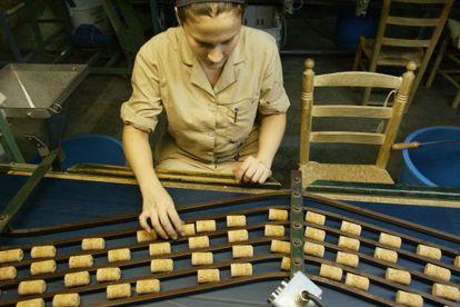 Industria Trefinos dedicada a la transformación del corcho en Palafrugell.