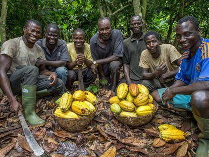 Productores de cacao en Kapatchira, de Ecookim.