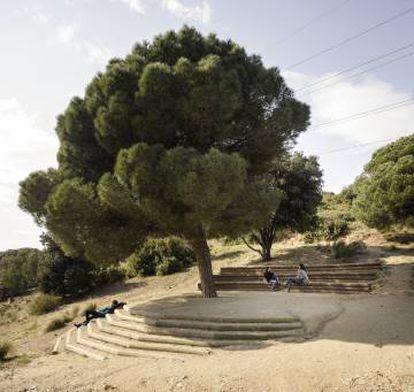 Un pino marca la zona de descanso en Can Tacó.