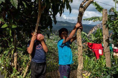 Dos niños en Chilón, Chiapas, que han pasado la mayor parte del año sin ir a la escuela y ayudando con las tareas del hogar después del cierre de las escuelas debido a la pandemia de coronavirus.