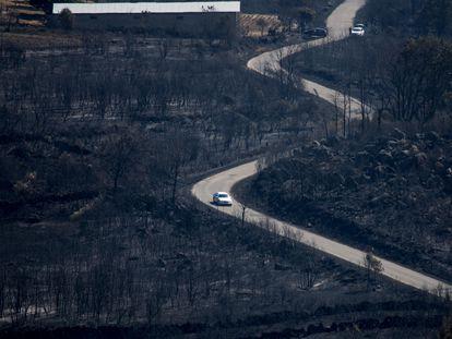 Superficie calcinada por el incendio de Cualedro (Ourense).