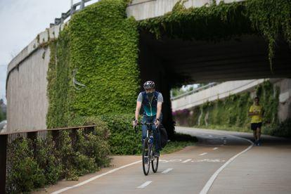 Bike path of Paseo Sant Joan in Barcelona, on Friday.