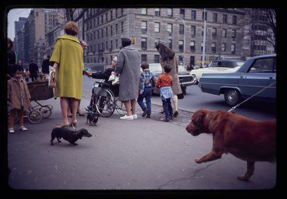 Fotografía de Garry Winogrand de una calle de Nueva York (ca. 1967).