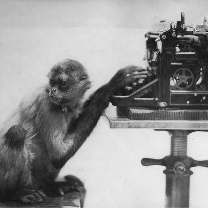 Un mono con una máquina de escribir