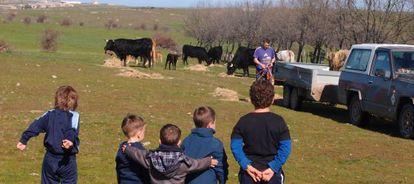 Un grupo de niños mira a un agricultor en Cabanillas del Monte (Segovia).