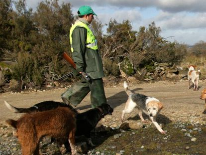 Un cazador junto a los perros, en una imagen de archivo.