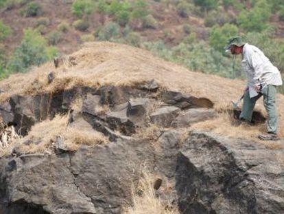 El análisis geológico de los restos de grandes erupciones volcánicas en India tratan de precisar la secuencia de cataclismos que acabó con más del 75% de la vida terrestre