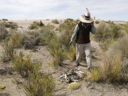 Las sequías en el continente dejan cada año pérdidas millonarias.