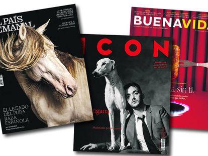 Bodegón con las revistas de EL PAÍS que amplían su disponibilidad esta semana.