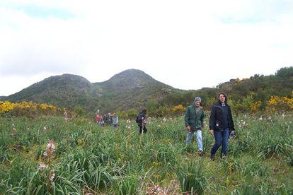 Ecologistas en el Coto de Eiras (Pontevedra), donde la Xunta acaba de autorizar un parque eólico.