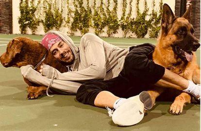 Enrique Iglesias, con sus perros, en una fotografía publicada en su cuenta de Instagram.