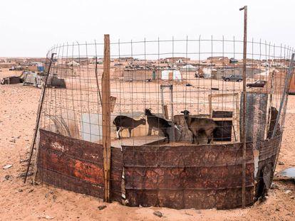 Fotografía de la serie 'Corrales de ganado', de Javier Andrada.