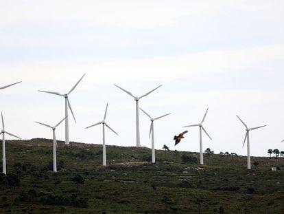 Molinos de viento en el parque eólico de Pradell de la Teixeta (Tarragona), el 1 de septiembre.