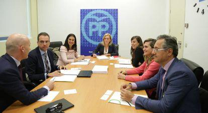 La portavoz popular de Sanidad, Teresa Angulo (c), junto con los diputados de su partido y los miembros de la Asamblea Nacional de Homeopatía.