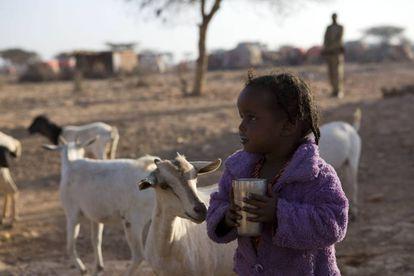 Una niña desplazada interna en Somalia debido a una sequía en su aldea, Qardho, donde las familias viven de la agricultura y la ganadería.