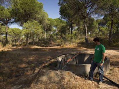 Un pozo ilegal de agua, en las inmediaciones de Doñana.