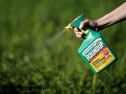 Una mujer utiliza el producto Roundup de Monsanto.
