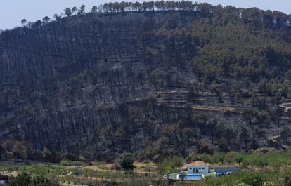Una casa en el límite de la zona carbonizada por las llamas en el término municipal de Andilla.