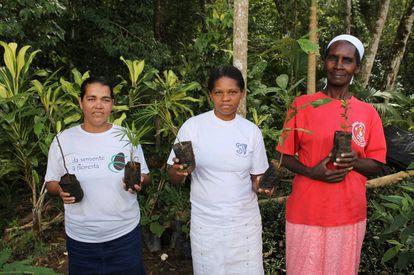 Mujeres trabajan en la recuperación de bosques en el interior de Sao Paulo.