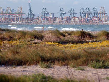 El puerto de Valencia desde la playa de El Saler.