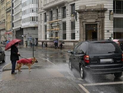 Un hombre espera para cruzar con su perro en un paso de cebra de A Coruña, este miércoles bajo las lluvias de 'Gaetan'.