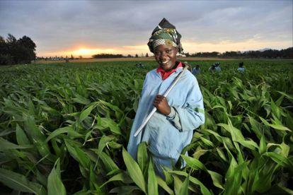 Materias primas africanas y deuda externa: no hay muchas sonrisas, estos días.