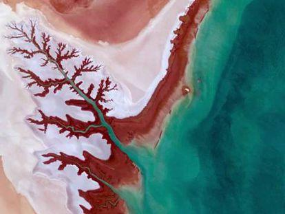 La mayor foto de la Tierra cumple diez años