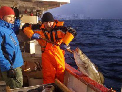 Una empresa muestra el rostro del pescador de cada ejemplar y ofrece la posibilidad de hablar con él