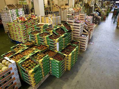 Mercado Central de Frutas y Hortalizas en Mercabarna
