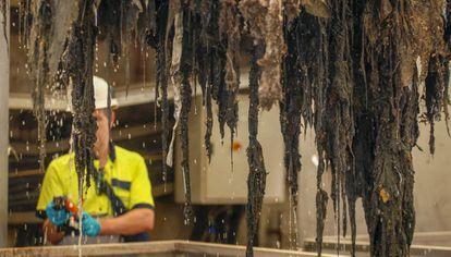 Una cuchara bivalva levanta de una arqueta residuos formados por toallitas higiénicas.