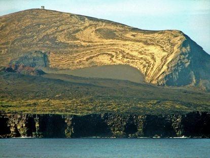 La isla de Surtsey emergió al sur de Islandia tras una erupción submarina en 1963. Las primeras plantas tardaron en aparecer una década. Hoy es un laboratorio natural de la relación entre volcanes y ecosistema.