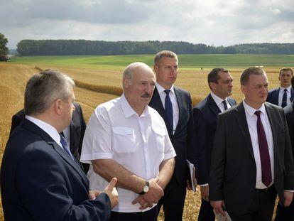 Aleksandr Lukashenko, con camisa blanca, en una visita a una empresa agrícola en el distrito de Nesvizh, el 27 de julio.