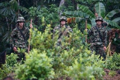Soldados del ejército colombiano realizan un operativo de erradicación de hoja de coca en San José del Guaviare en marzo de 2019