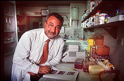 Bernat Soria, en su laboratorio del Instituto de Bioingeniería de la Universidad Miguel Hernández, en Elche (Alicante) en 2019.