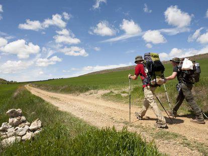 Dos peregrinos caminan por las llanuras burgalesas del Camino Francés.