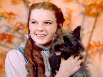 Judy Garland, caracterizada como Dorothy en 'El mago de Oz'.