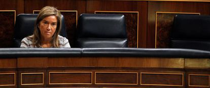 La diputada del PP Ana Mato, en el Congreso.