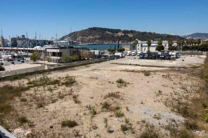Terreno en el que la Autoridad Portuaria desea que se construya el Museo Hermitage de Barcelona.