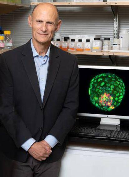 El investigador Juan Carlos Izpisúa posa con la foto de un embrión artificial.