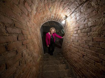 Síle Maguire, la embajadora de Irlanda en España, en un túnel en su residencia oficial en Madrid.