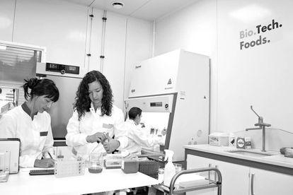 A la izquierda, el laboratorio de la vasca Biotech Foods, una de  las empresas españolas que se han embarcado en la producción  de carne sintética.