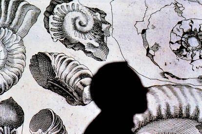 Silueta de un visitante a la exposición sobre Leonardo Da Vinci inaugurada en Florencia.