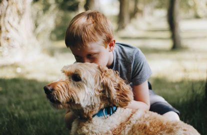 Un niño abraza a su perro.