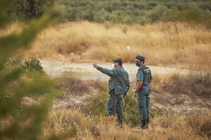 Agentes de la Guardia Civil desplegados en el dispositivo en búsqueda de la pantera en Ventas de Huelma (Granada)