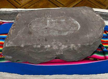 Fotografía cedida por la Agencia Boliviana de Información (ABI) de la huella humana pétrea más antigua del mundo.